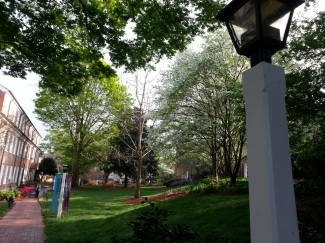 Salem College, Lamp Post and Campus